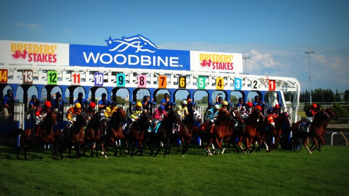 PARTY WITH MR. WILL AT WOODBINE RACETRACK!