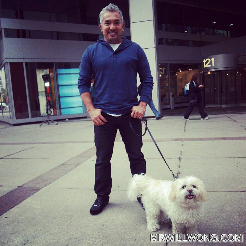 #SPOTTED: CESAR MILLAN IN TORONTO PROMOTING CANADIAN LIVE TOUR