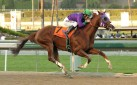 #HORSERACING: AN EARLY GLIMPSE AT THE CONTENDERS FOR THE 2014 KENTUCKY DERBY!