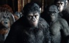 "#BOXOFFICE: MOVIEGOERS EXPERIENCE MONKEY MADNESS AS ""DAWN OF THE PLANET OF THE APES"" OPENS BIG"