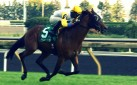 #HORSERACING: DANISH DYNAFORMER WINS THE BREEDERS' STAKES IN EYE-POPPING FASHION