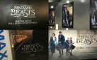 """#FIRSTLOOK: """"FANTASTIC BEASTS AND WHERE TO FIND THEM"""" TORONTO SPECIAL FAN EVENT"""