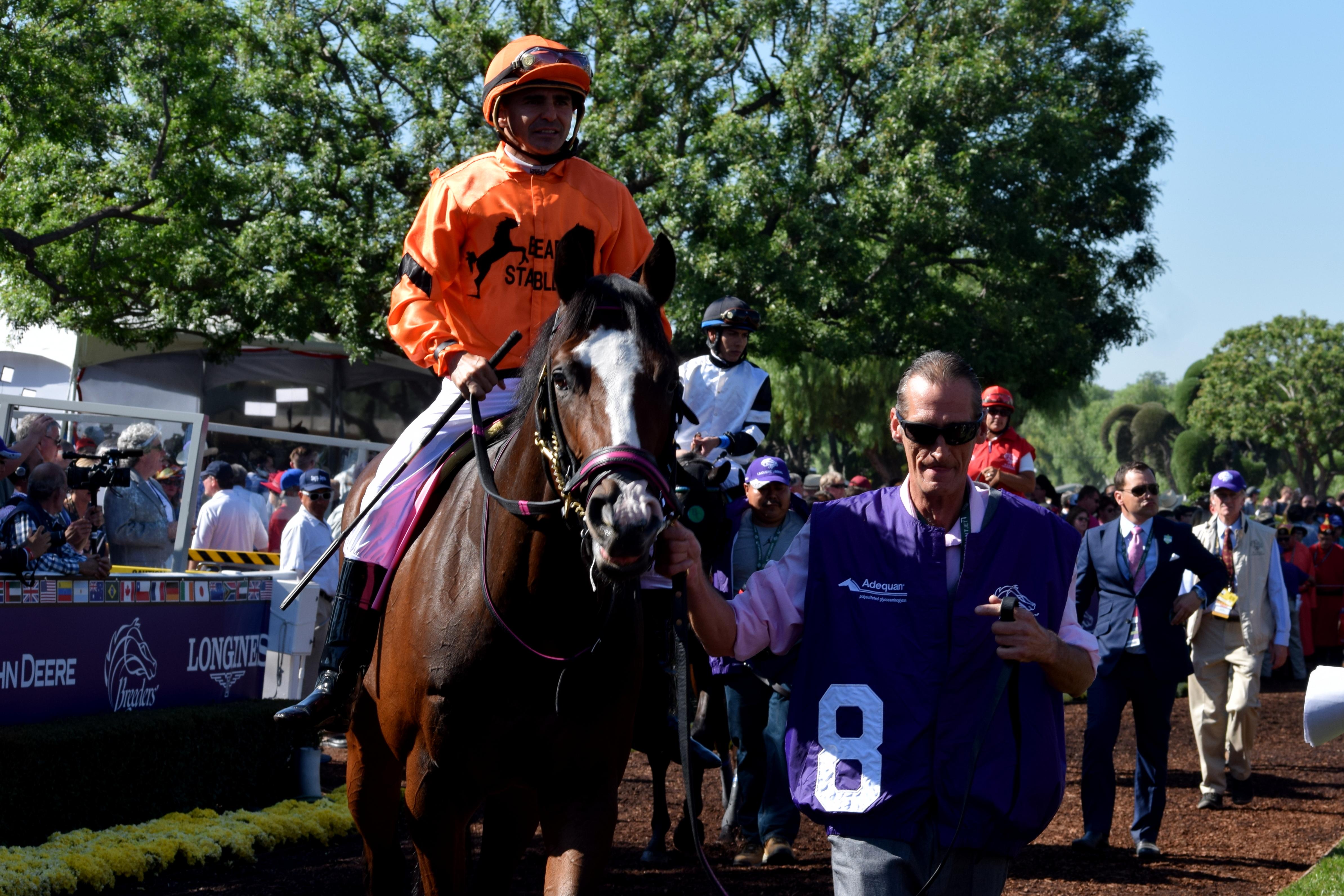 Mr Will Wong Toronto Entertainment Blogger Horse Racing