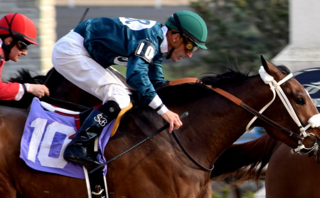 """#HORSERACING: A PIC BY MRWILL'S """"PRINCESS DIARIES"""" – MAY 2017"""