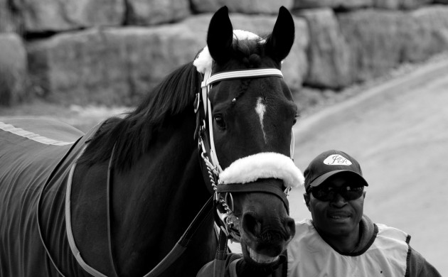 """#HORSERACING: A PIC BY MRWILL'S """"PRINCESS DIARIES"""" (MAY 2017 VOL. II)"""
