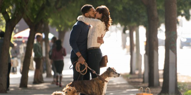 "#GIVEAWAY: ENTER TO WIN ADVANCE PASSES TO SEE ""DOG DAYS"""
