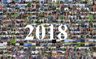 #HORSERACING: A YEAR IN HORSES 2018