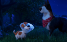 "#FIRSTLOOK: NEW TRAILER FOR ""THE SECRET LIFE OF PETS 2"""