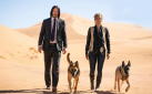 "#BOXOFFICE: ""JOHN WICK 3"" DETHRONES ""AVENGERS"" IN DEBUT"