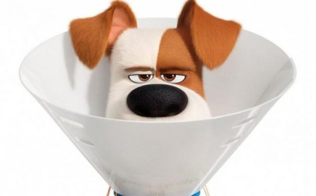 """#GIVEAWAY: ENTER TO WIN ADVANCE PASSES TO SEE """"THE SECRET LIFE OF PETS 2"""""""