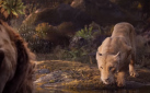 "#FIRSTLOOK: BEYONCÉ KNOWLES-CARTER AS NALA IN ""THE LION KING"""