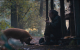 """#REVIEW: """"PIG"""""""