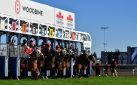 """#HORSERACING: """"TOWN CRUISE"""" IS TALK OF THE TOWN IN THE RICOH WOODBINE MILE"""