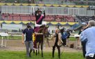 #HORSERACING: BRITISH ROYALTY REIGNS SUPREME IN THE BREEDERS' STAKES